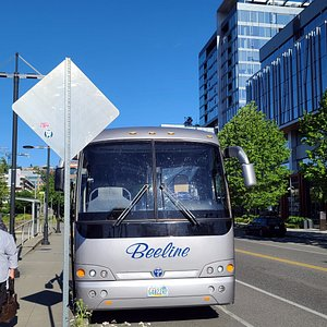 Beeline Charters and tour, our chariot for 5 days during tours