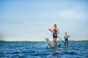 Explore Northern Michigan's pristine waterways on a Traverse City paddling excursion. Learn more at https://www.traversecity.com/.