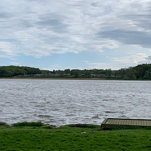 Søen set fra rostadion