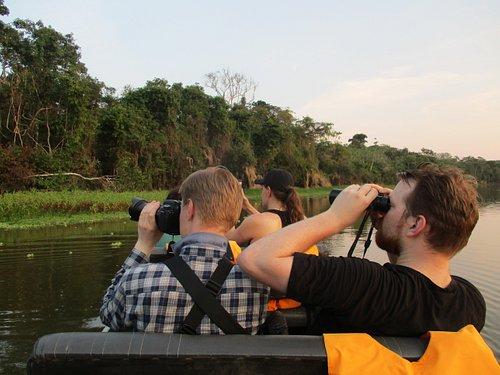 Excursions, Bird watching