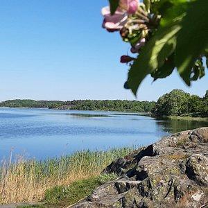 En vacker plats, som ligger väldigt centralt i Stockholm