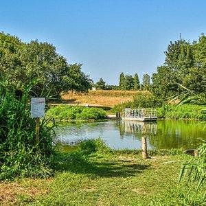 Bateaux à chaîne du Marais de l'île. Crédit photo : LOUERAT Nicolas.