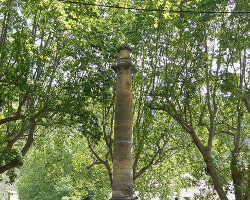 Ancienne colonne dédiée à Pétrarque sous une voûte d'arbres magnifiques.