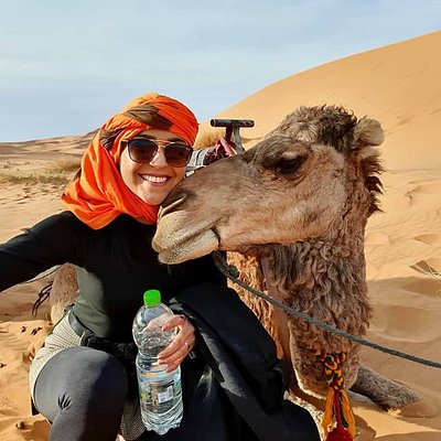 Erg Chebbi camel trekking