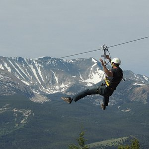 Our course is perfect for first time zippers and thrill seekers alike!