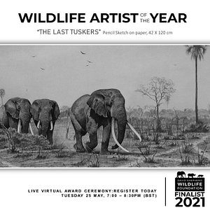 """""""THE LAST TUSKERS"""" MEDIUM: Pencil Sketch on paper, Fabriano Acid free, 300gsm SIZE:42 X 120 cm  (16.54 X 47.24in ) ARTIST: TICHAONA NCUBE PRICE: $ NOTES: African Elephant (""""Indlovu – Southern African Ndebele) will soon varnish form planet earth, the numbers of elephants killed for their precious ivory is increasing. It's also one of the most celebrated 'iconic' wild animals in Africa & serves as a Heritage Symbol because lots of 'Bantu' people got named after the elephant. CATEGORY: EXTINCTION"""