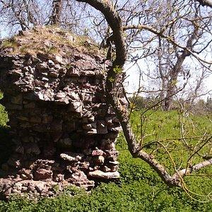 A bit of Roxburgh Castle wall
