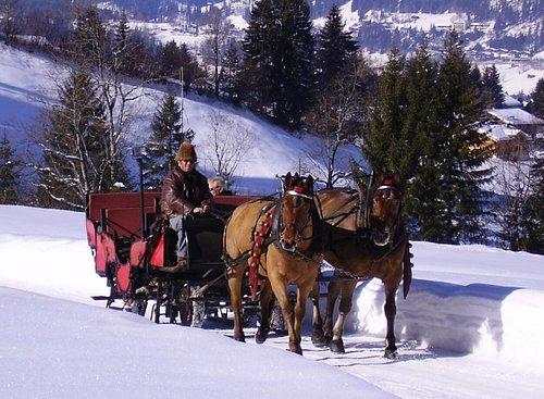 Schlitten- und Kutschenfahrten Walter Reuteler (Grund bei Gstaad BE)