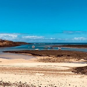 Panorama North tour in Fuerteventura brings you aswell to Majanicho