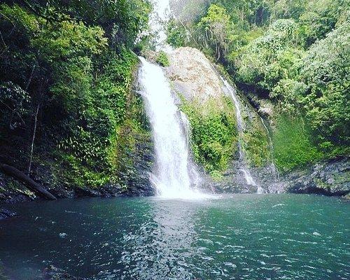 Swim at Cassowary Falls