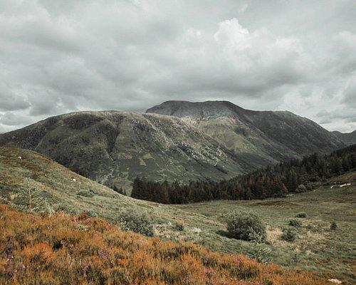 Cow Hill trail