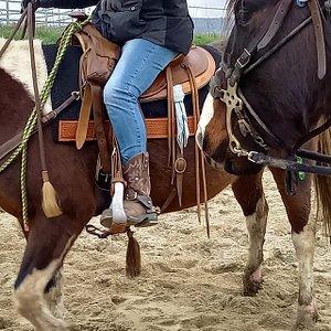 Centre équestre d'équitation western de loisirs