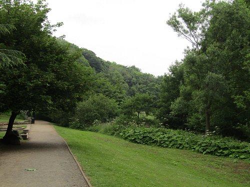 views around the gardens