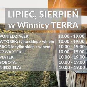 Lipiec, Sierpień w Winnicy TERRA