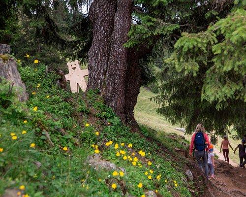 Autschli ist der magische Bär aus Lenzerheide. Der handgefertigte Stoffbär ist mit Kirschkernen gefüllt und kann seine kleinen und grossen Besitzer wärmen, kühlen oder trösten, wenn es mal wieder «Autsch!» gemacht hat. Seit Sommer 2018 hat er seinen eigenen Erlebnisweg, auf welchem kleine und grosse Entdecker tolle Abenteuer erleben und viel über sein Zuhause, den Wald, lernen. Der Erlebnisweg ist eine Mischung aus Lern-, Erlebnis- und Genusspfad.