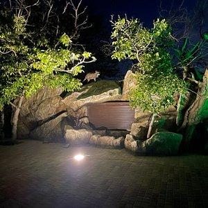 Зоопарк «Лукоморье» отличное месте для отдыха всей семьей!