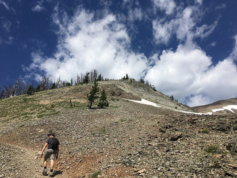 A hiker ascends steeply up an unclear path to Avalanche Peak.