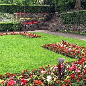 Vibrant flower beds