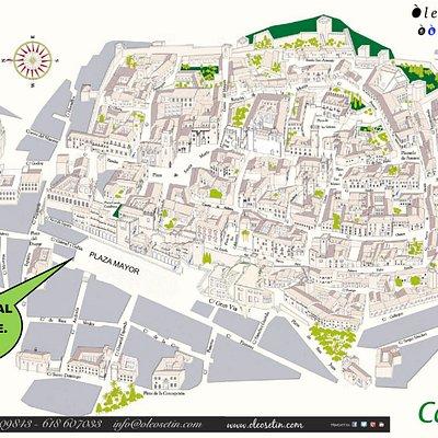 Nos mudamos de Calle Gran Vía a la Plaza Mayor de Cáceres, ahora estamos en los soportales de la plaza en la parte baja....Oleosetin, La Catedral del Aceite Plaza Mayor nº20 Bajo