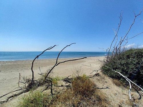 Spiaggia Riserva