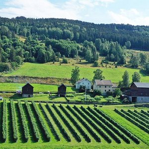 The farm lies just beside the skiresort of Hafjell