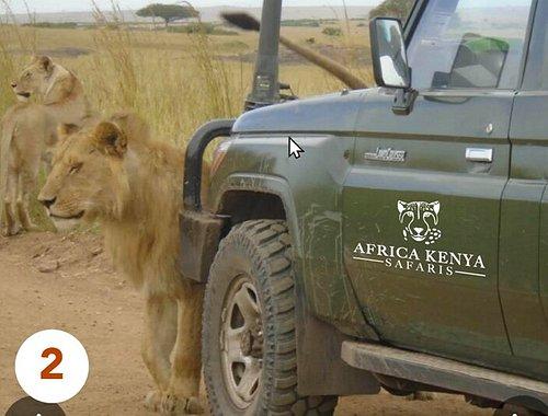 Africa Kenya Safaris