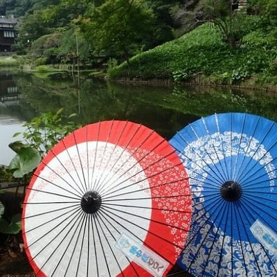 higo-hosokawa garden wagasa