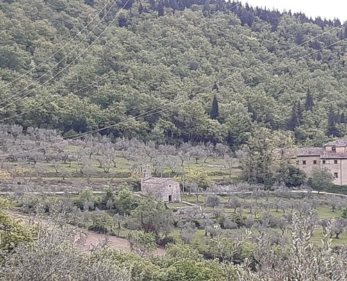 panoramica delle colline, al centro la Chiesa  di San Bartolomeo A Carmignanello