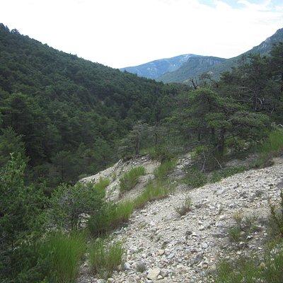 Vallée des Siréniens. Vue 45. Randonnée. Départ du Col des Lèques. Entre Digne et Castellane. Juillet 2021.