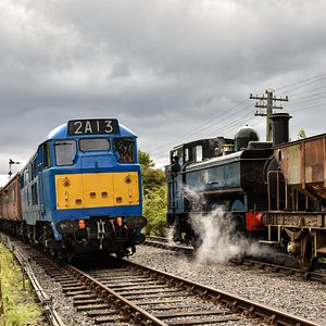 Class 31 diesel and visiting GWR pannier tank 2018 (Joey Evans)