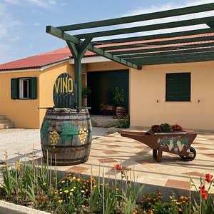 Tasting and buying local wines is possible in renovated house situated beside the main road leading over whole Pag island