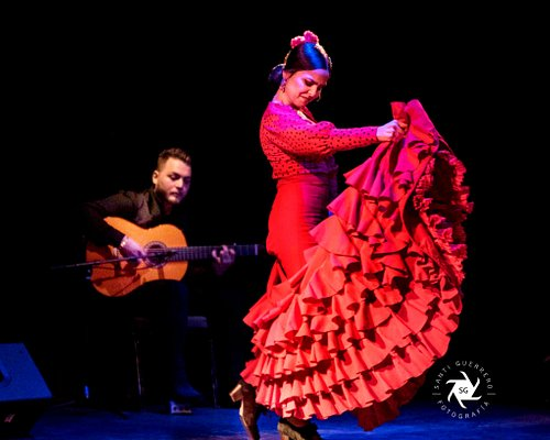 Amazing Flamenco Shows Best Tablao Flamenco in Town