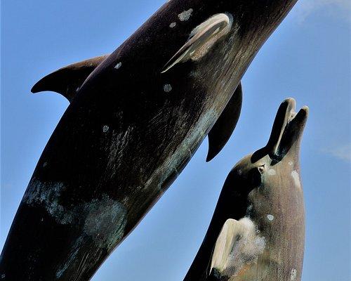 1.  Cardigan Bay Dolphins Statue, Barmouth Harbour, Barmouth, Gwynedd, North Wales