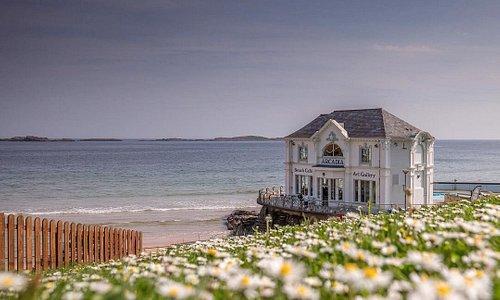 Everything's coming up daisies in sunny Portrush, Antrim 🌼☀️                                                   📍 Portrush, County Antrim                                                                                                                                                                                                                                                                                                                    📸 instagram.com/sixmileimages/