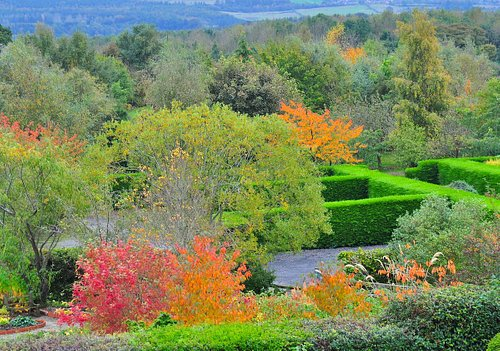 November view of the gardens, we open occasionally during autumn, ( weather dependent) please check our website which is updated weekly before setting out.
