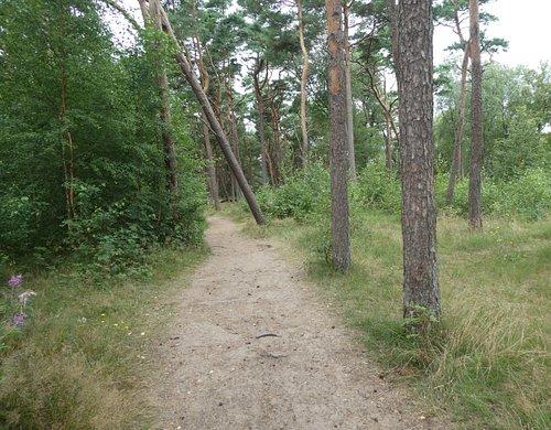 Hagöns Naturreservat i Halmstad