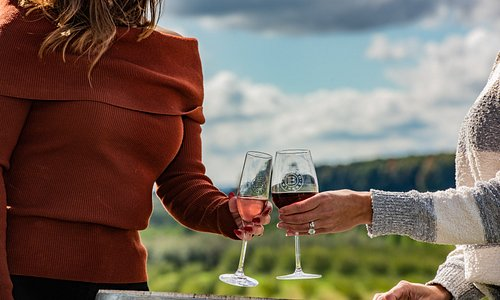 Take a wine tour on the Traverse Wine Coast this fall. Get the details at traversecity.com.