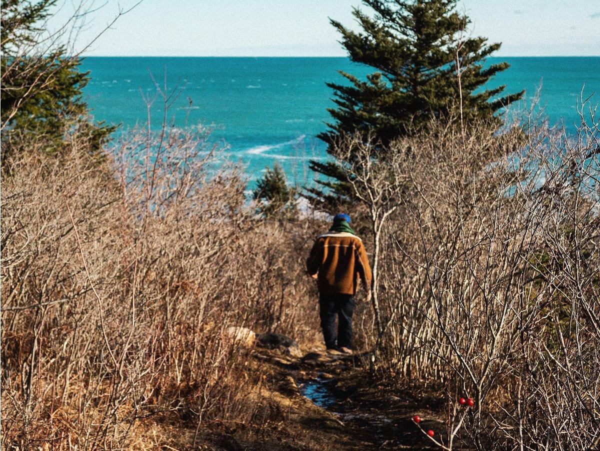 Man walking in Acadia