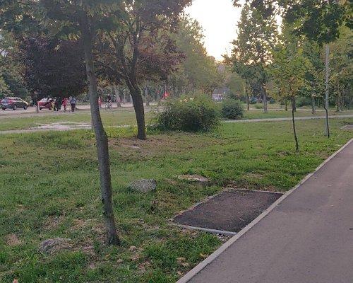 Красивый парк