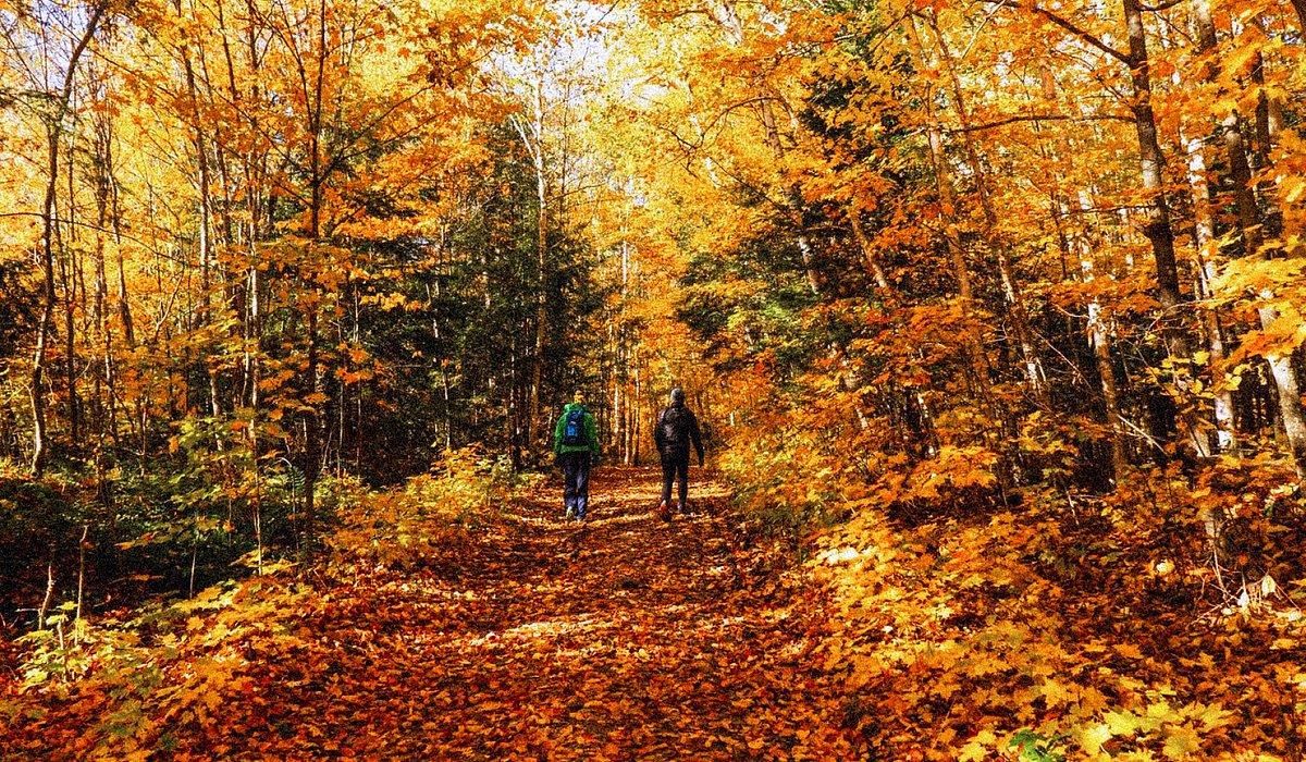 Killarney Provincial Park in the fall