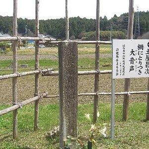 復元された馬防柵です。この付近の背後の丘陵部が徳川家康の本陣跡です。
