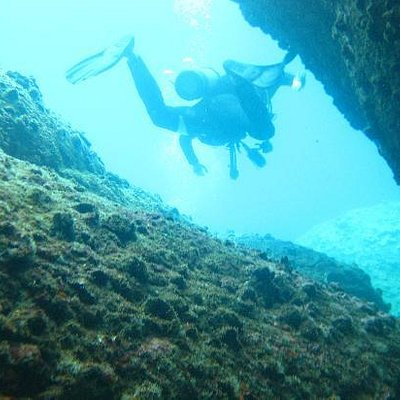 Great dives at Cham Islands