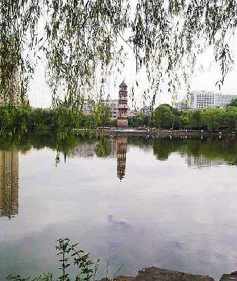 Park near Yiwu Kingdom Hotel