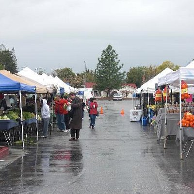 Berressa Farmers Market on a rainy day