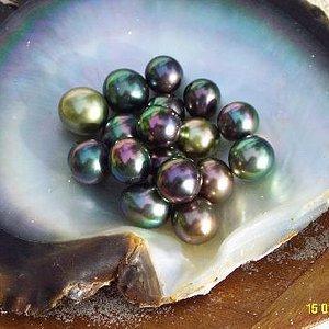 Tahitian Pearls from Gauguin's Pearl Farm