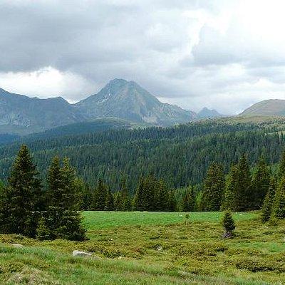 weite Bergwälder