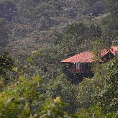 Parque Natural Chicaque (Chicaque National Park)