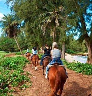 Horseback Riding At Turtle Bay Resort