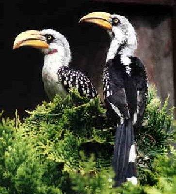 Vogelpark Niendorf