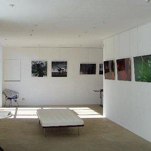 Alain Deymier - Ménerbes 2008